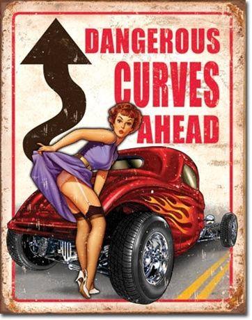 DANGEROUS CURVES-TS