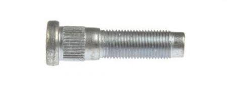 DOR-610-389.gif